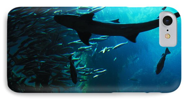 Shark Above IPhone Case by Carl Purcell