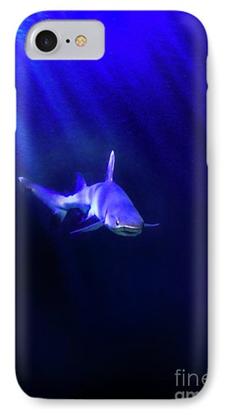 IPhone Case featuring the photograph Shark by Jill Battaglia