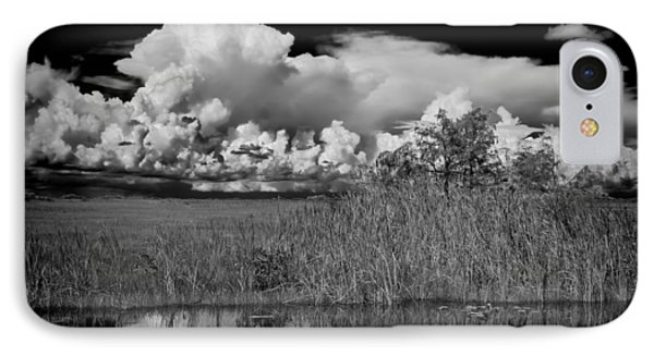 shark river slough BW Phone Case by Rudy Umans