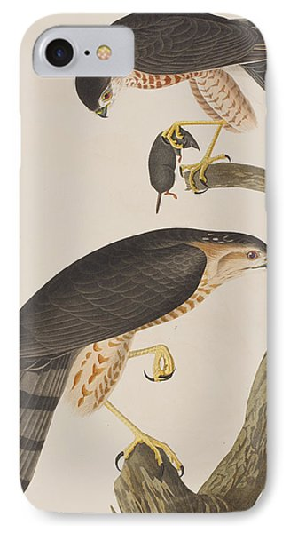 Sharp-shinned Hawk IPhone Case by John James Audubon