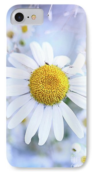 IPhone Case featuring the photograph Shasta Daisy by Stephanie Frey