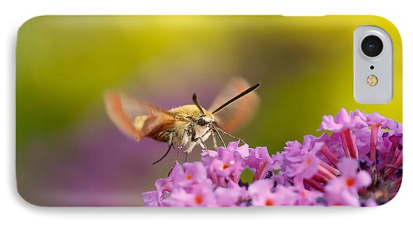 Like A Rainbow - Broad Bordered Bee Hawk-moth IPhone Case by Roeselien Raimond