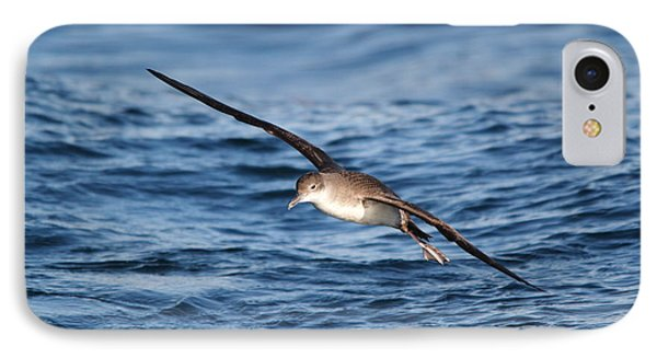IPhone Case featuring the photograph Shearwater by Richard Patmore