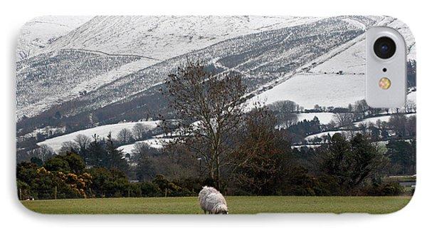Sheep Grazing Atthe Galtees  Ireland's Tallest Inland Mountains IPhone Case