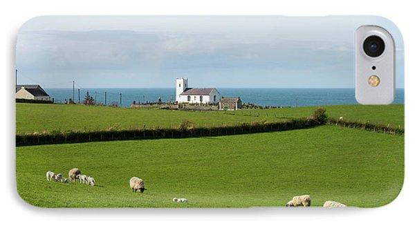 IPhone Case featuring the photograph Sheep Grazing On Irish Coastline by Juli Scalzi
