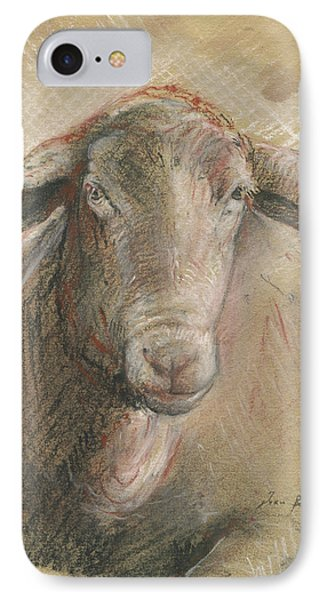 Sheep iPhone 7 Case - Sheep Head by Juan Bosco