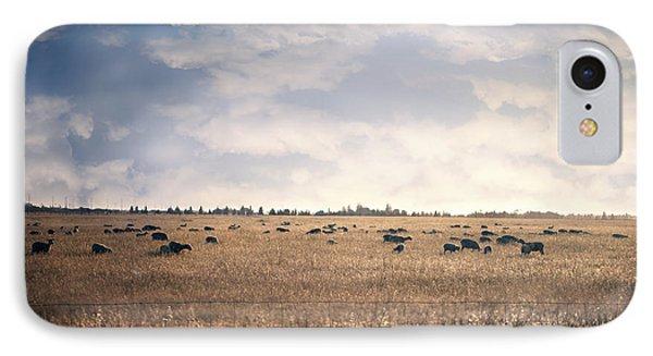 Sheep Sunset IPhone Case