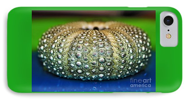 Shell With Pimples Phone Case by Kaye Menner