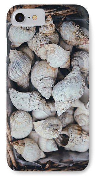 Shells IPhone Case by Happy Home Artistry