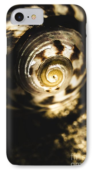 Shells In Detail IPhone Case by Jorgo Photography - Wall Art Gallery