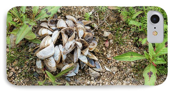 IPhone Case featuring the photograph Shells Of Freshwater Mussels by Michal Boubin