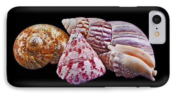 IPhone Case featuring the photograph Shells On Black by Bill Barber