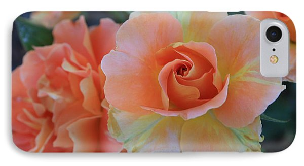 Sherbert Rose IPhone Case by Marna Edwards Flavell