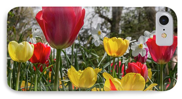 IPhone Case featuring the photograph Sherwood Gardens 17 by Chris Scroggins