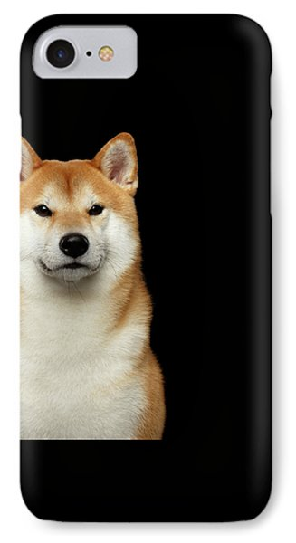 Shiba Inu IPhone Case by Sergey Taran