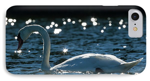 IPhone Case featuring the photograph Shining Swan by Michelle Wiarda