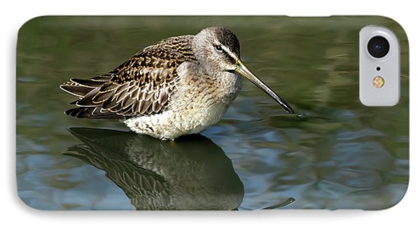 IPhone Case featuring the photograph Short-billed Dowitcher by Sharon Talson