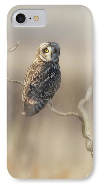IPhone Case featuring the photograph Short-eared Owl by Angie Vogel