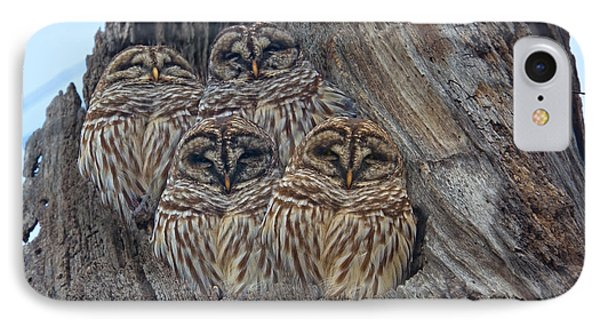 Show Me Your Hooters IPhone Case by Betsy Knapp