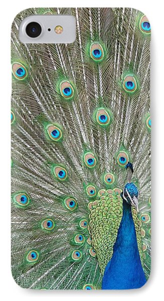 IPhone Case featuring the photograph Showing Off by Margaret Bobb