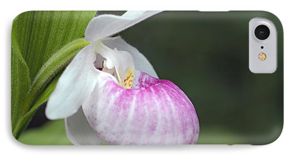 Showy Ladyslipper IPhone Case by Larry Ricker
