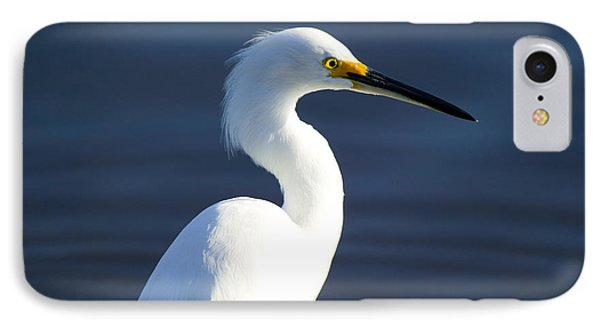 Showy Snowy Egret IPhone Case