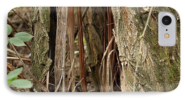 IPhone Case featuring the photograph Shredded Tree by Carol Lynn Coronios