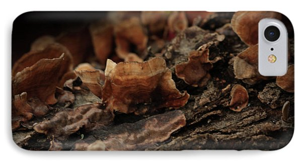 IPhone Case featuring the photograph Shrooms by Kim Henderson