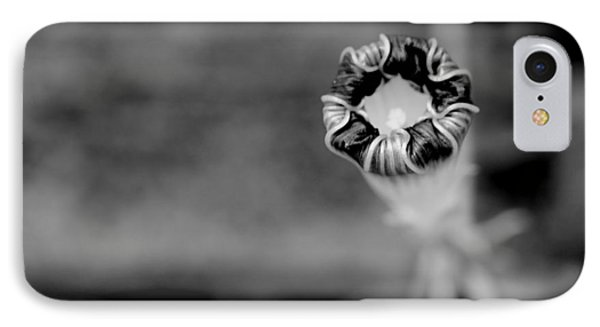 IPhone Case featuring the photograph Shy by Corinne Rhode