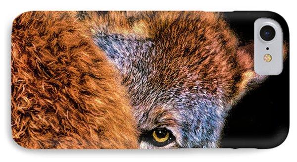 Shy Cyote IPhone Case by Adam Olsen