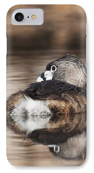 Shy Grebe IPhone Case by Ruth Jolly