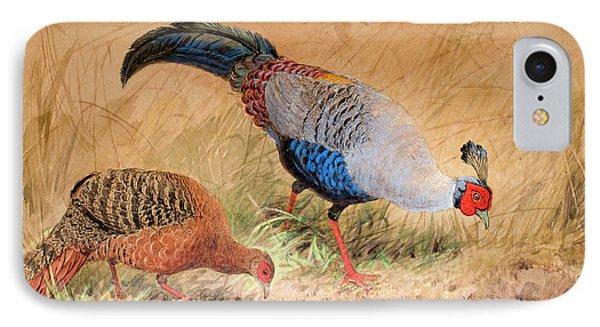 Siamese Pheasant  IPhone 7 Case by Joseph Wolf
