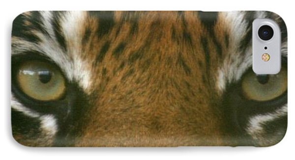 Siberian Eyes - Tiger IPhone Case