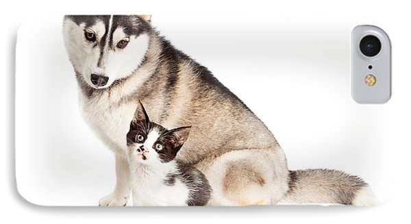 Siberian Husky Dog Sitting With Little Kitten IPhone Case by Susan Schmitz