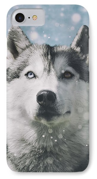 Siberian Husky With Snowflakes IPhone Case by Wolf Shadow  Photography
