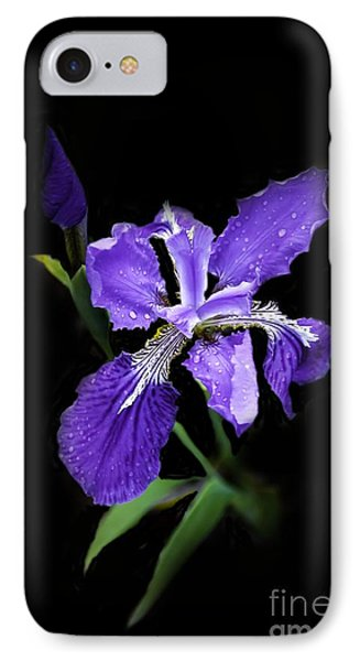Siberian Iris IPhone Case by Marilyn Carlyle Greiner