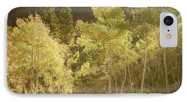 IPhone Case featuring the photograph Side-lit Aspens - Autumn In Eastern Sierra California by Ram Vasudev