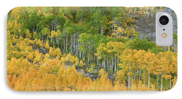 Sierra Autumn Colors IPhone Case