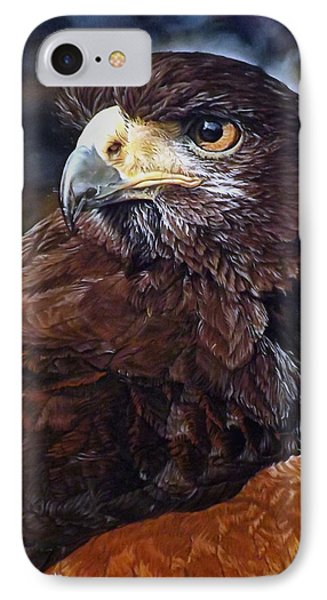 Sig The Harris Hawk IPhone Case by Linda Becker