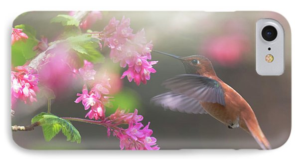 Sign Of Spring 2 IPhone Case by Randy Hall
