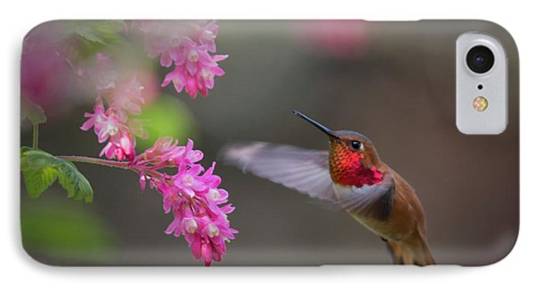 Sign Of Spring IPhone Case by Randy Hall