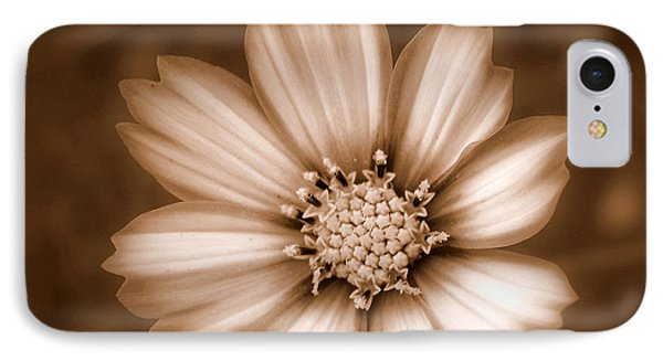 Silent Petals IPhone Case by Trish Tritz