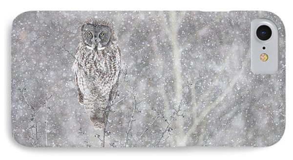 IPhone Case featuring the photograph Silent Snowfall Landscape by Everet Regal