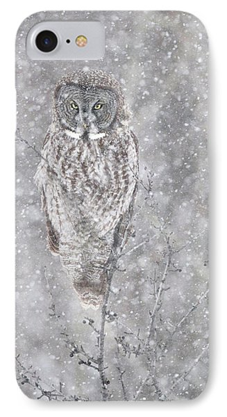 IPhone Case featuring the photograph Silent Snowfall Portrait by Everet Regal