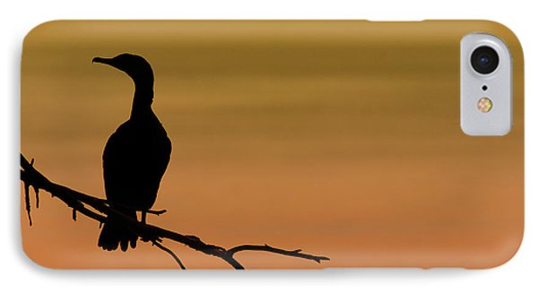 Silhouette Cormorant IPhone Case by Sebastian Musial