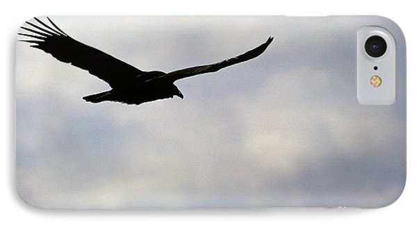 Silhouette Of A Turkey Vulture  Phone Case by Erin Paul Donovan