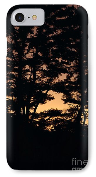 Silhouette Of Forest  Phone Case by Erin Paul Donovan