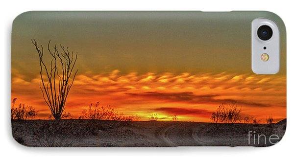 Silhouette Sunset IPhone Case by Robert Bales
