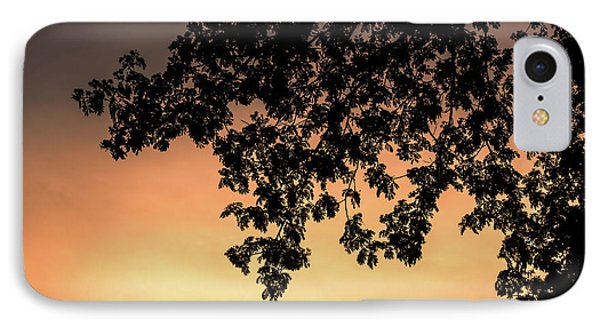 Silhouette Tree In The Dawn Sky IPhone Case by Jingjits Photography