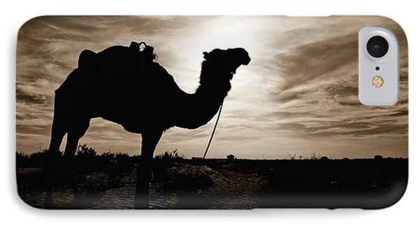 Silhouetted Camel, Sahara Desert, Douz IPhone Case by David DuChemin